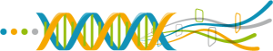 Expert digital learning au Mans notre ADN