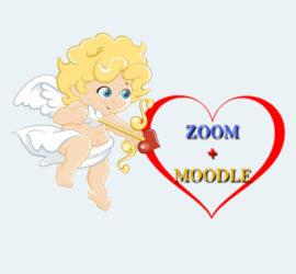 zoom moodle