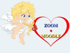 zoom moodle interconnexion