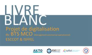 telechargement digitalisation formation BTS MCO