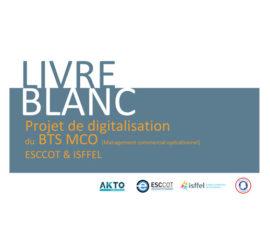 vignette livre blanc digitalisation formation BTS MCO