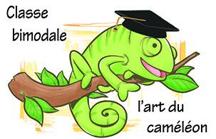 classe bimodale formateur cameleon