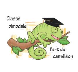 cameleon formateur bimodale